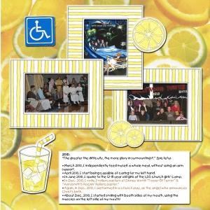 lemonade-2010-web