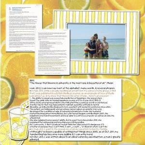 lemonade-2011-web