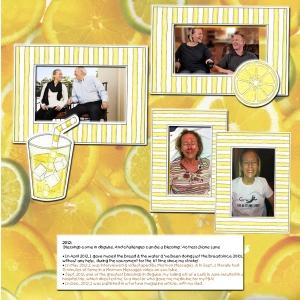 lemonade-2012-web