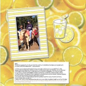 lemonade-2013-web